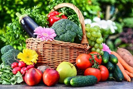 orgánica agricultura
